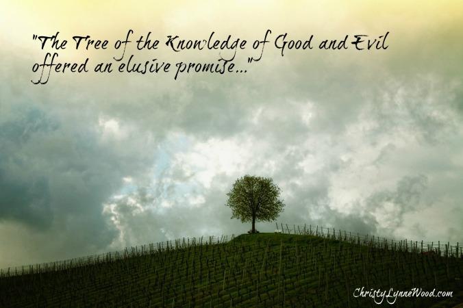 tree-207584_1920 (1)